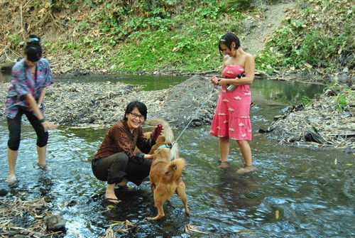 dogs_and_ladies_in_the_stream