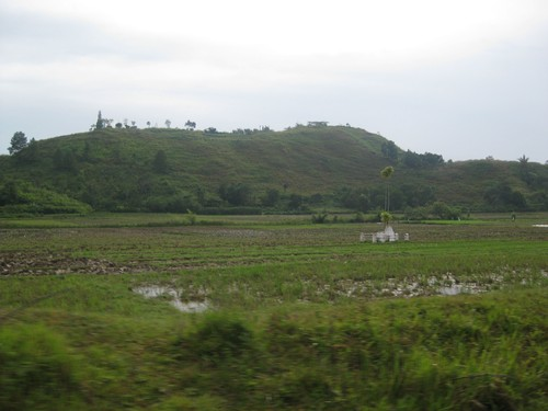 growing_crops_at_Samosir_island