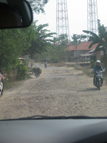 terrain_to_Taman_Nasional_Way_Kambas