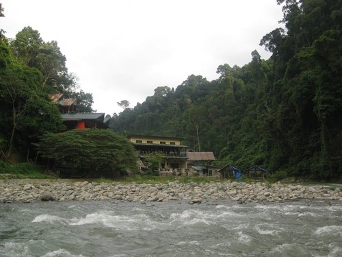 bungalows_at_Gunung_Leuser_National_Park