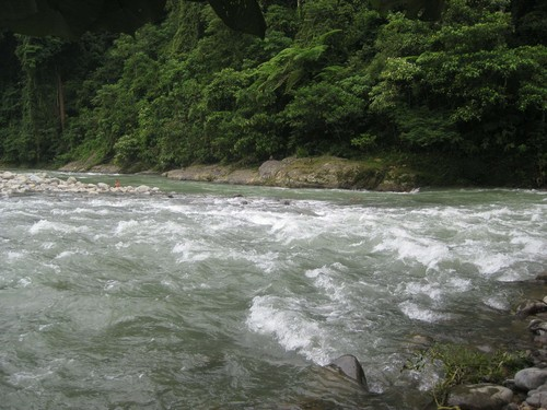 tubing_at_Gunung_Leuser_National_Park