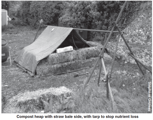 Compost_heap_with_straw_bale_side_with_tarp_to_stop_nutrient_loss