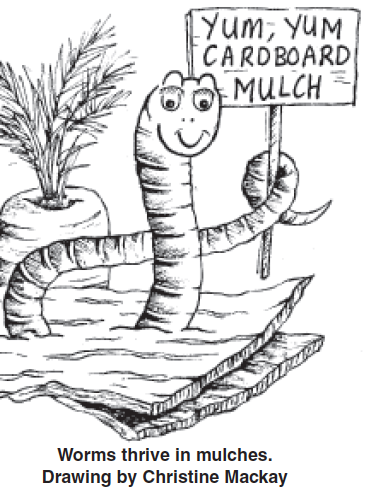 Worms__Mulches_drawing