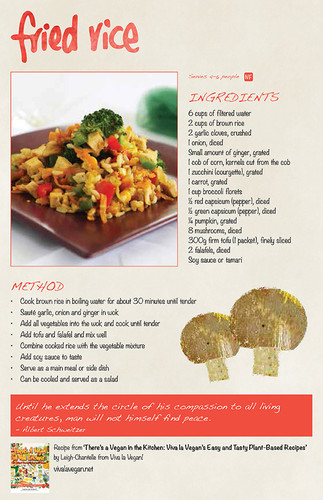 VeganKitchen_RecipeCards_FriedRice_web