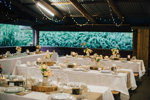 Viva La Vegan! - Vegan Destination Wedding: Jessica & Adrian ...