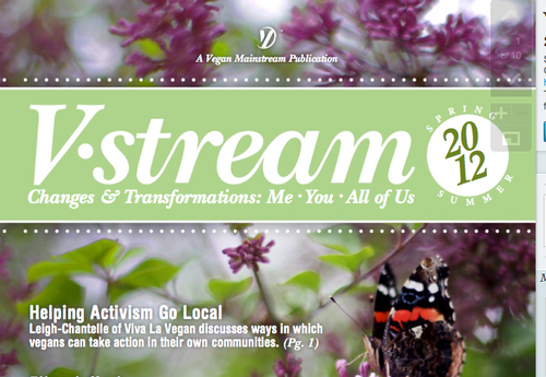VStream sneak peak cover