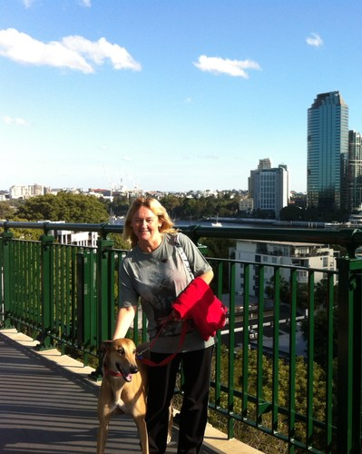 On the Storey Bridge, Brisbane with Banjo