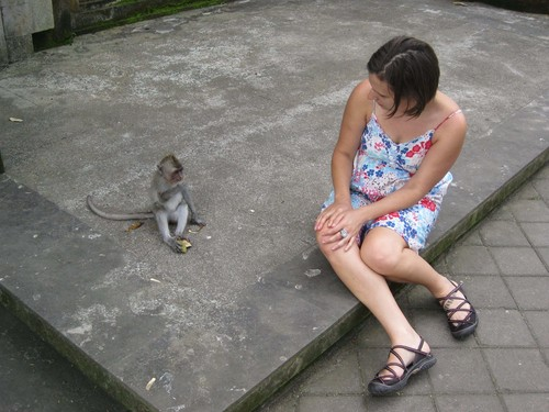 baby_monkey_LC_at_monkey_forest