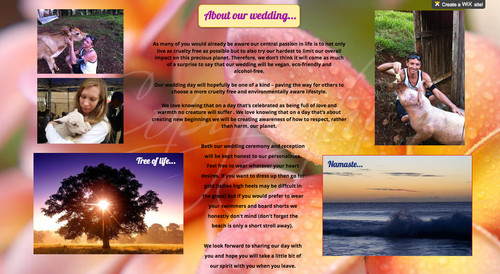 About_Our_Wedding