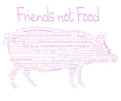 friends_not_food